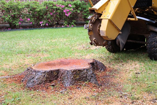 Yellow Machine Grinding a Red Tree Stump